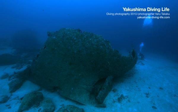 竹島で沈船発見!_b0186442_19372315.jpg
