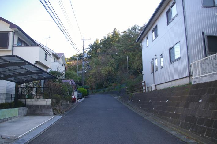 鎌倉の美しい里山継承プロジェクトを11・1・22からスタート_c0014967_1543153.jpg