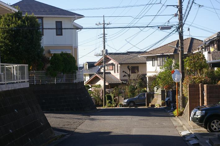 鎌倉の美しい里山継承プロジェクトを11・1・22からスタート_c0014967_1561862.jpg