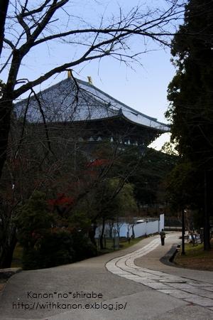 奈良公園で写んぽ♪_d0148187_2329534.jpg