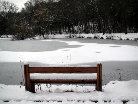 パリは今日も雪です。_c0090198_4565214.jpg