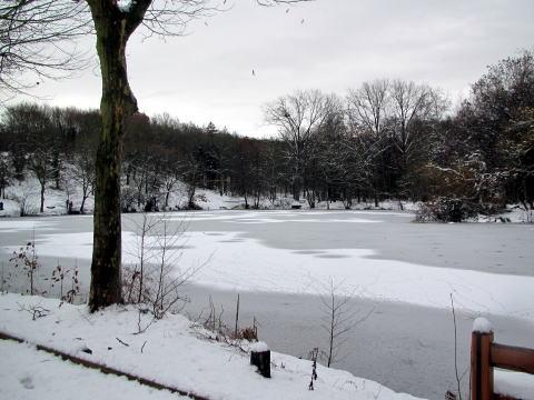 パリは今日も雪です。_c0090198_4571231.jpg