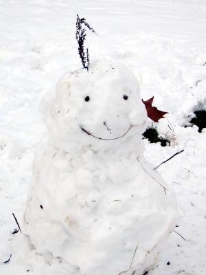 パリは今日も雪です。_c0090198_57690.jpg