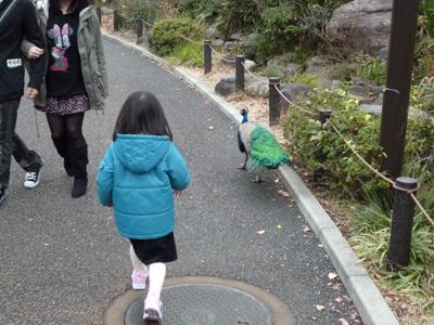 お散歩 横浜市立野辺山動物園_e0174913_13442890.jpg