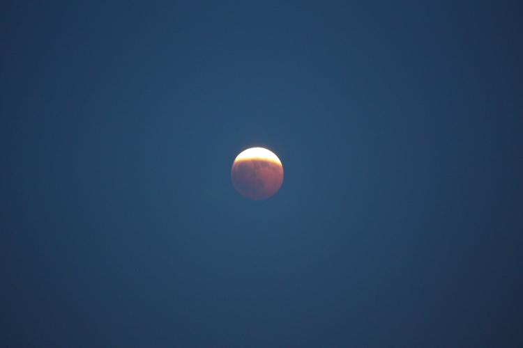 皆既月食 撮ってはみましたが・・。 12月21日_f0113639_19593333.jpg