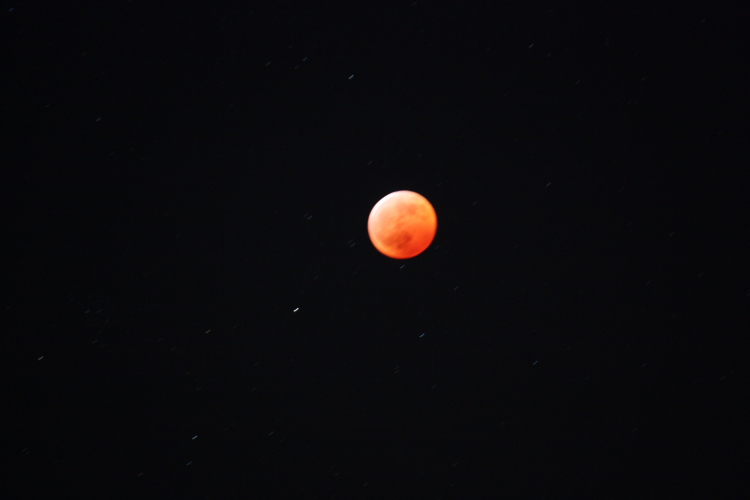 皆既月食 撮ってはみましたが・・。 12月21日_f0113639_2004780.jpg