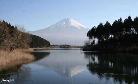 田貫湖へ行ってきました_f0082141_10322832.jpg