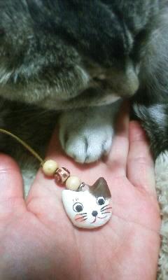 猫の手も借りたい……。_e0081959_21301757.jpg