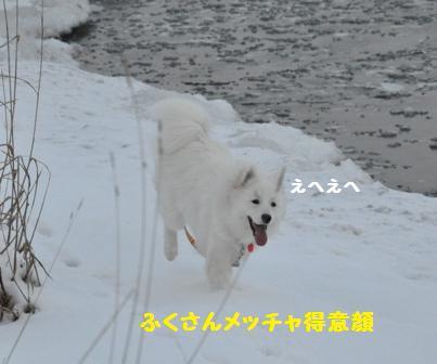 f0212597_1148383.jpg