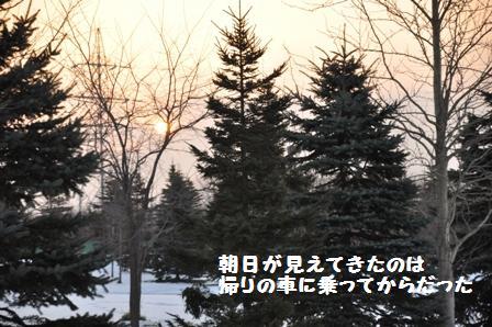 f0212597_11581425.jpg