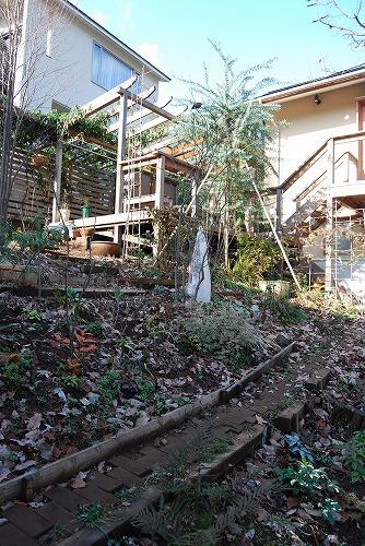 12月の庭…_c0124100_1755286.jpg