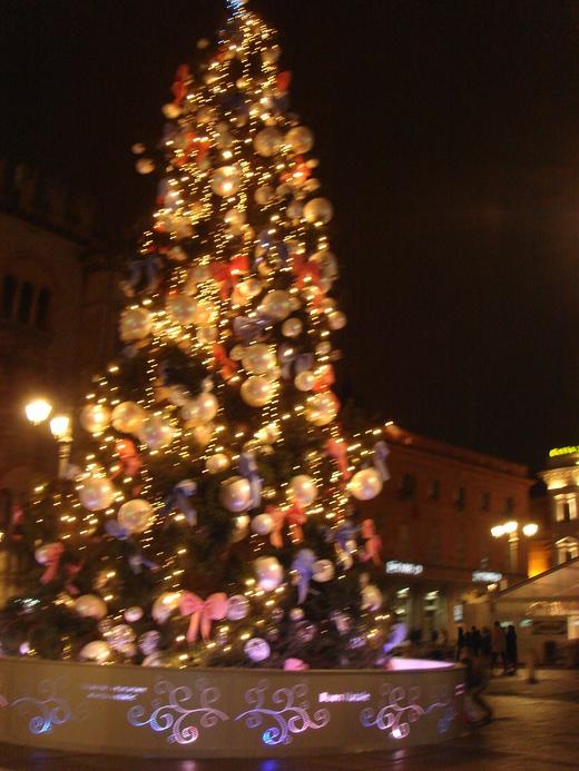 クリスマスのパルマ_c0222316_0213147.jpg