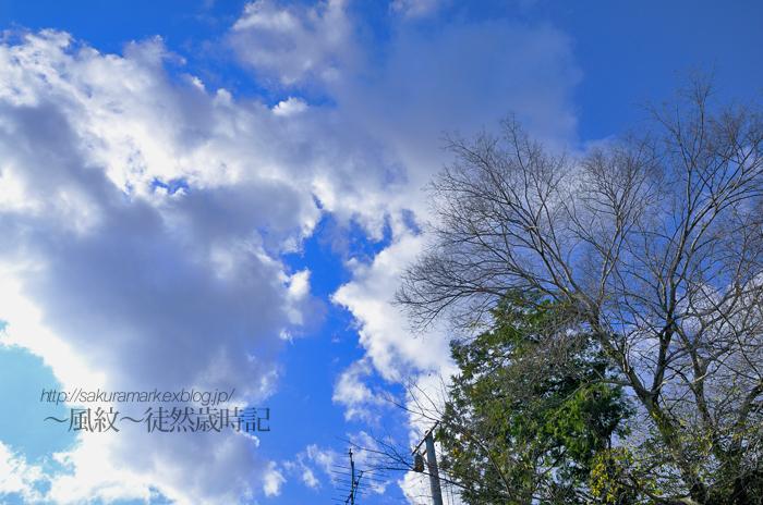2010 冬至の日の空。_f0235723_20425038.jpg