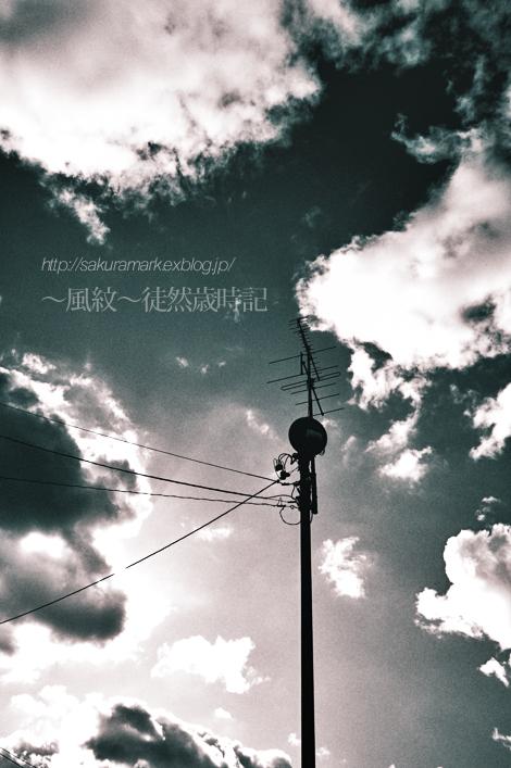 2010 冬至の日の空。_f0235723_2048055.jpg