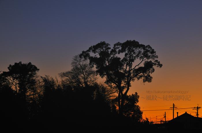 2010 冬至の日の空。_f0235723_20482162.jpg