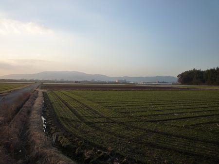 九州の「飛鳥」に行って来ました_c0222861_13132367.jpg