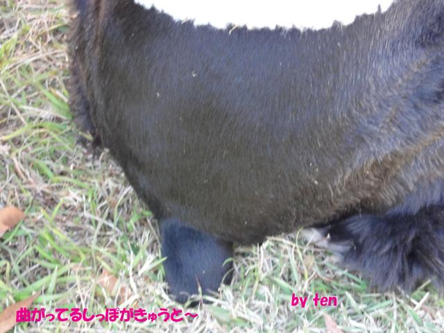 f0218182_1644840.jpg