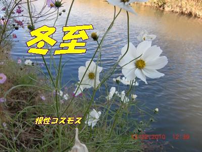 b0205192_16504729.jpg