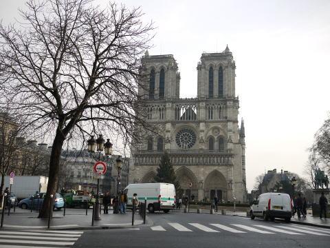 フランス滞在許可証更新&ペットショップの子犬たち_c0090198_3452131.jpg