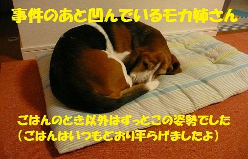 f0121712_10183338.jpg