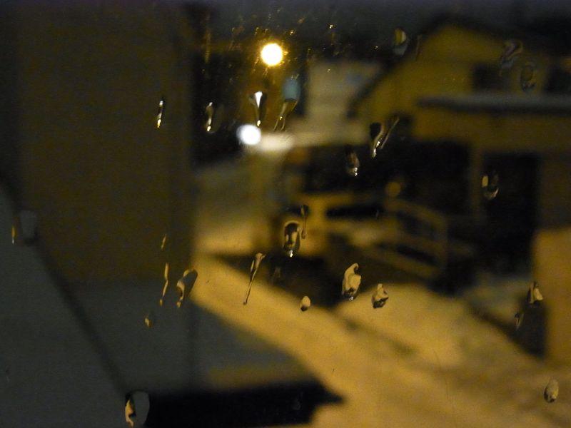 降り続く雪が積もらない_c0025115_22123695.jpg