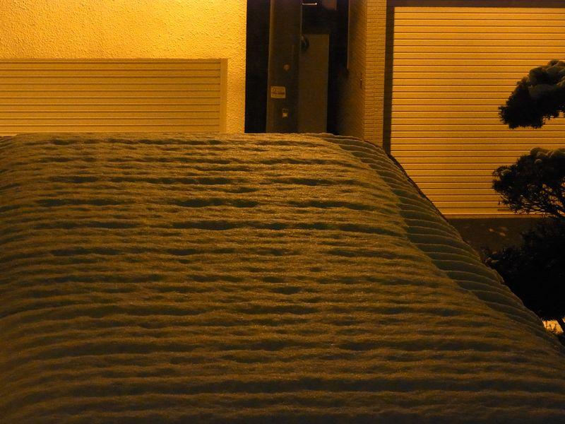 降り続く雪が積もらない_c0025115_22123896.jpg