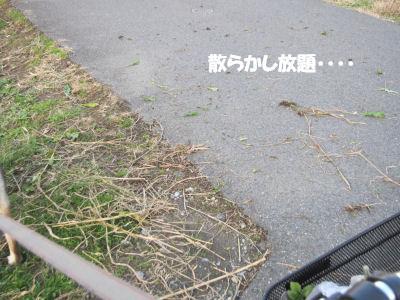 f0143123_200759.jpg