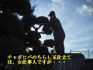f0031037_2124654.jpg