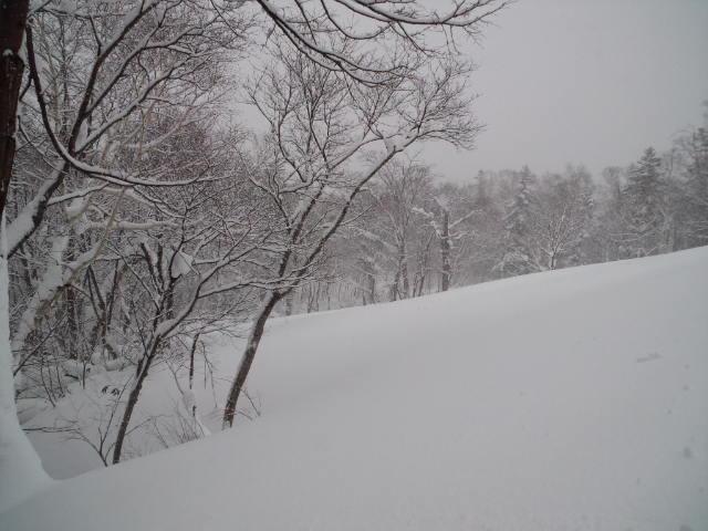 札幌国際☆_c0151965_19521445.jpg