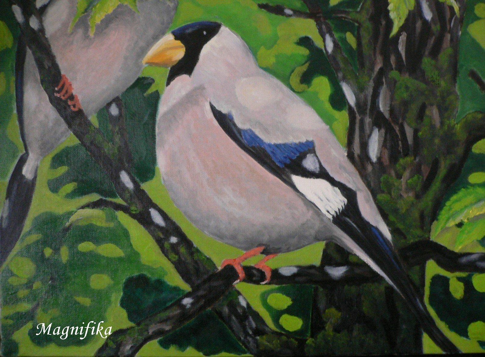 my gallery 15: やさしい声 斑鳩 6号 gentle voice ©_e0140365_21422678.jpg