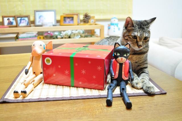 黒猫ミミの怒り_a0126590_7434645.jpg