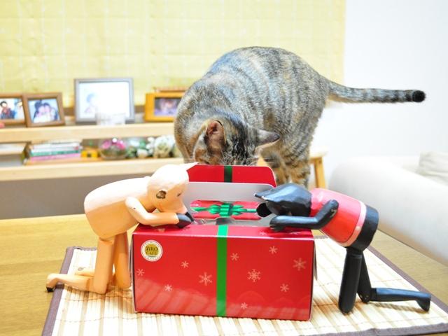 黒猫ミミの怒り_a0126590_7451337.jpg