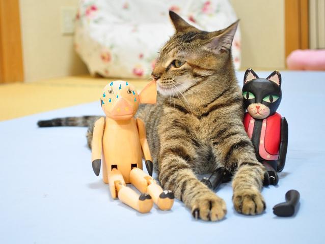 黒猫ミミの怒り_a0126590_84974.jpg