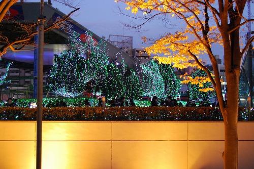 クリスマスの夜に…_c0124100_21384646.jpg