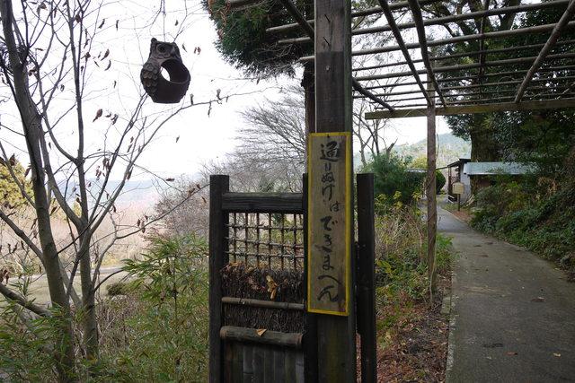岩湧山 きゅうさかの道_e0214805_71204.jpg