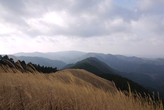 岩湧山 きゅうさかの道_e0214805_795679.jpg