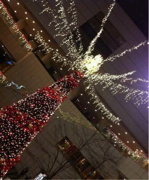 Buon Natale!!_d0146108_1654373.jpg