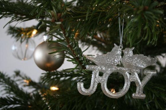 メリークリスマス☆_b0193324_21201996.jpg