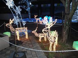 クリスマス・イブ_e0184224_98625.jpg