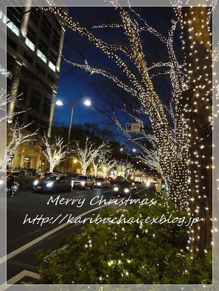 今年のクリスマス_c0079828_002541.jpg
