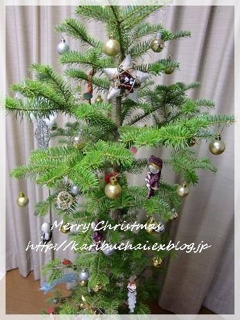 今年のクリスマス_c0079828_2346924.jpg