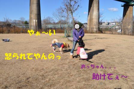 f0176830_1532266.jpg