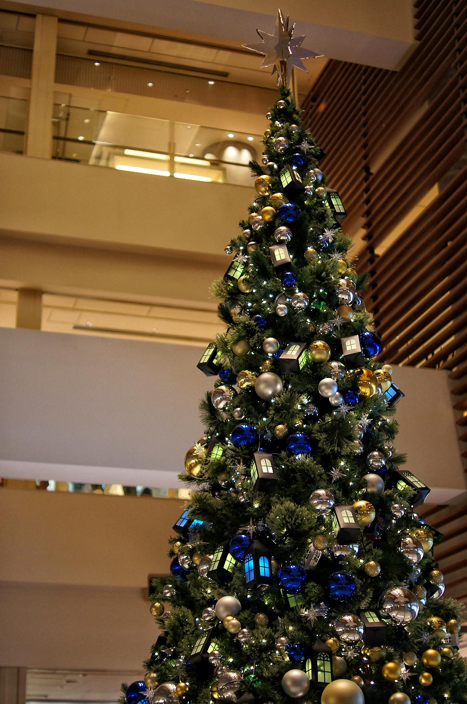 Christmas tree_e0216133_0121034.jpg