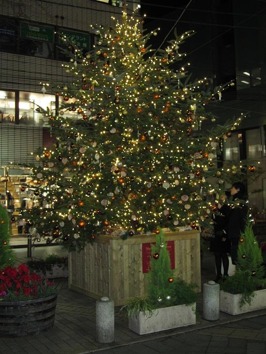 メリークリスマス_d0155439_21544398.jpg