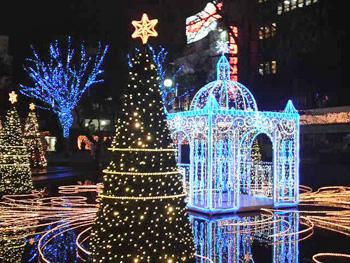 メリークリスマス、警固公園初体験・・_c0219595_1053034.jpg