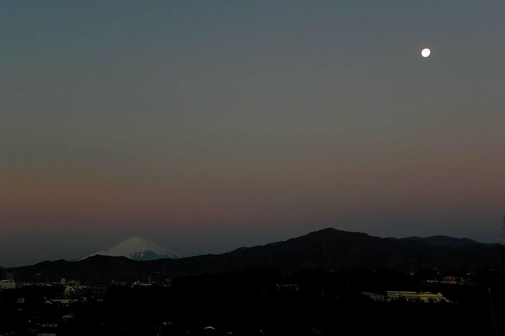 サザンカメジロ/十六夜の名残月、富士山を転げ落ちた_b0024798_5423736.jpg