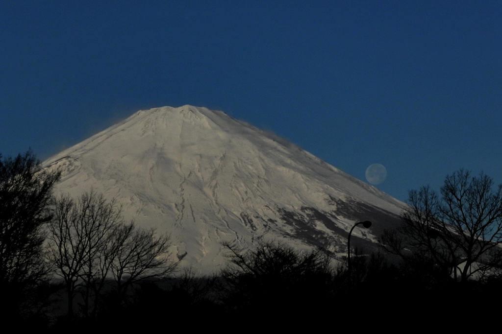サザンカメジロ/十六夜の名残月、富士山を転げ落ちた_b0024798_542497.jpg