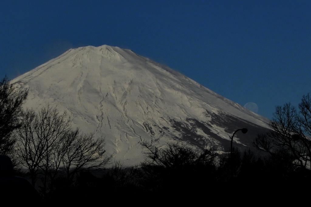 サザンカメジロ/十六夜の名残月、富士山を転げ落ちた_b0024798_543027.jpg