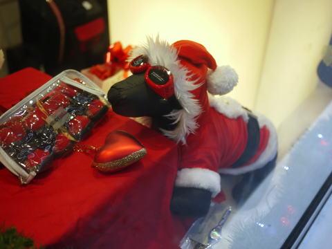 今年はのんびりお家でクリスマス_c0090198_1155158.jpg