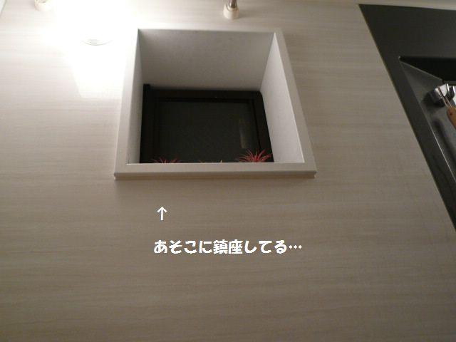 e0094407_2241021.jpg